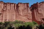 Les murs du canyon de Talampaya. Rotsmuren tot in de hoogte van 150 meter.