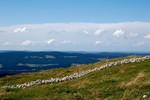 Vue depuis le Mont Tendre. Uitzicht van de Mont Tendre.