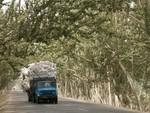 Route typique du Xinjiang