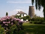 Maison dans la campagne aux alentours d'Utrecht