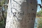 Gregory's Tree, du nom du chef de la première expédition dans la région en 1856